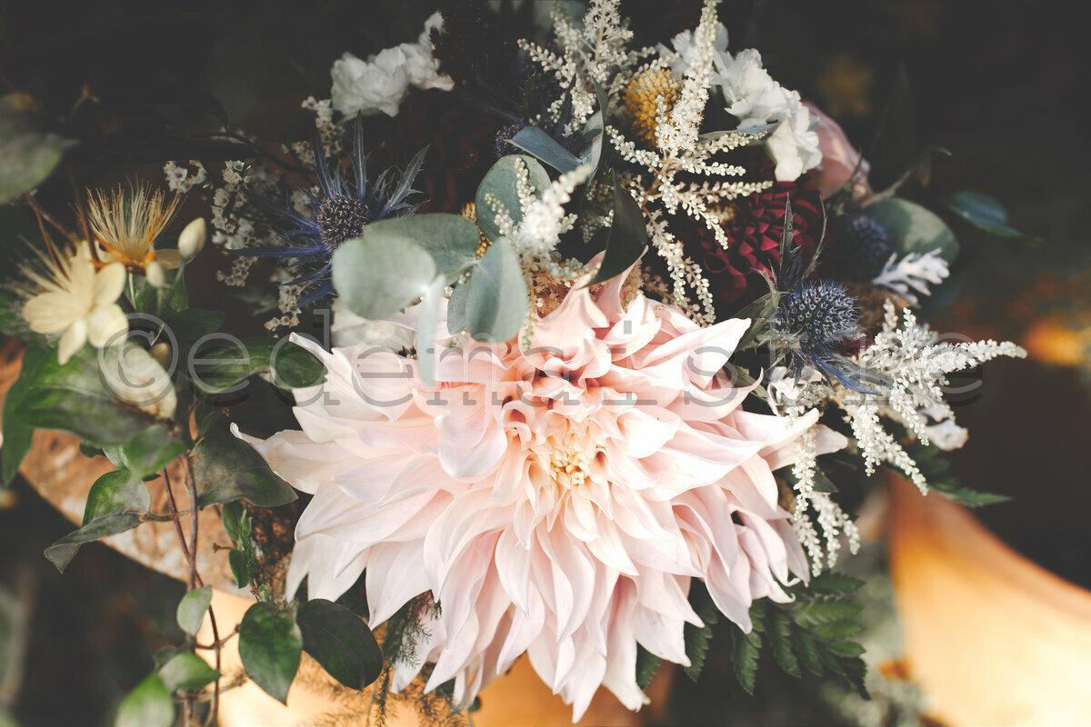 Bouquet de fleur avec un énorme dahlia